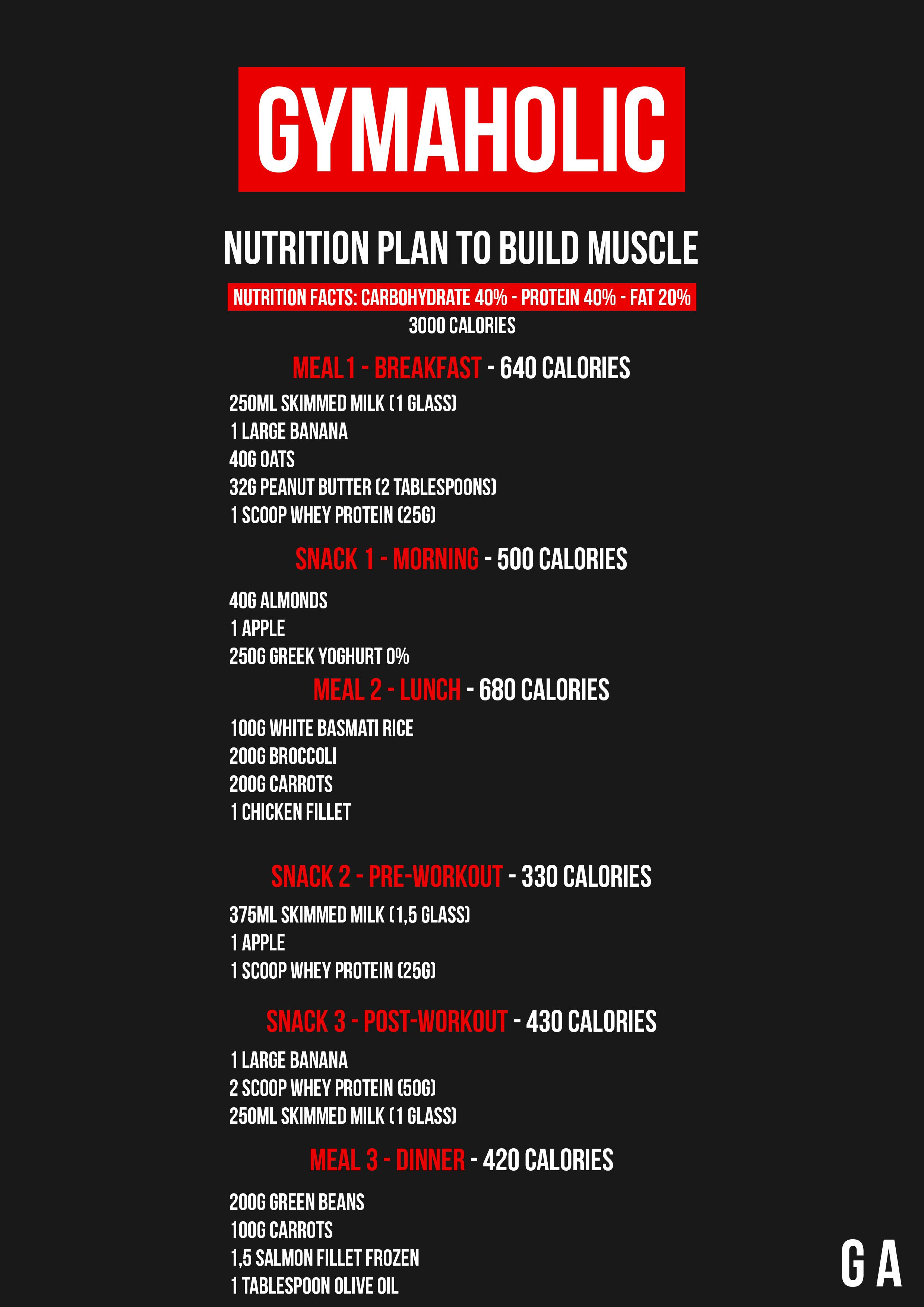 Fast Workout Plan To Build Muscle Mass