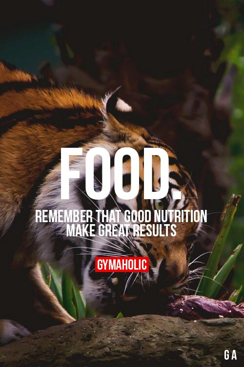 how to make nutrition food
