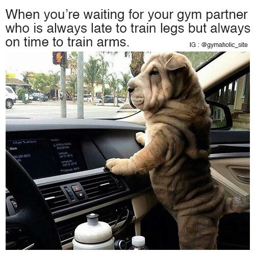 When You're Waiting For Your Gym Partner