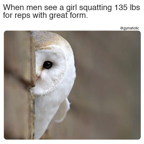 When men see a girl squatting