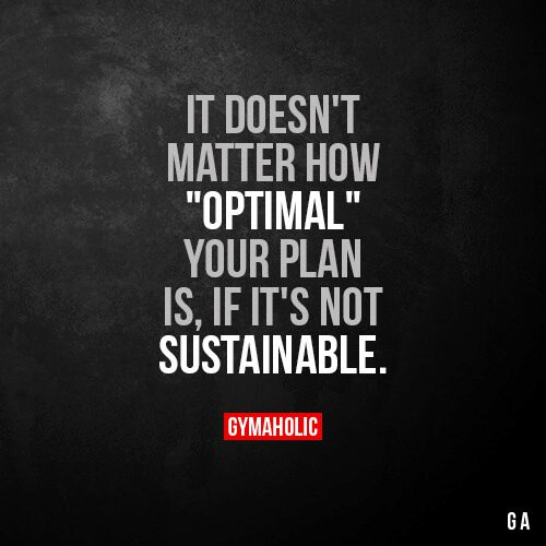 "It doesn't matter how ""optimal"" your plan is"